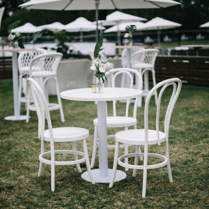 Bentwood Chair; White